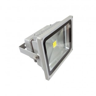 Proyector LED Eco Light 30W